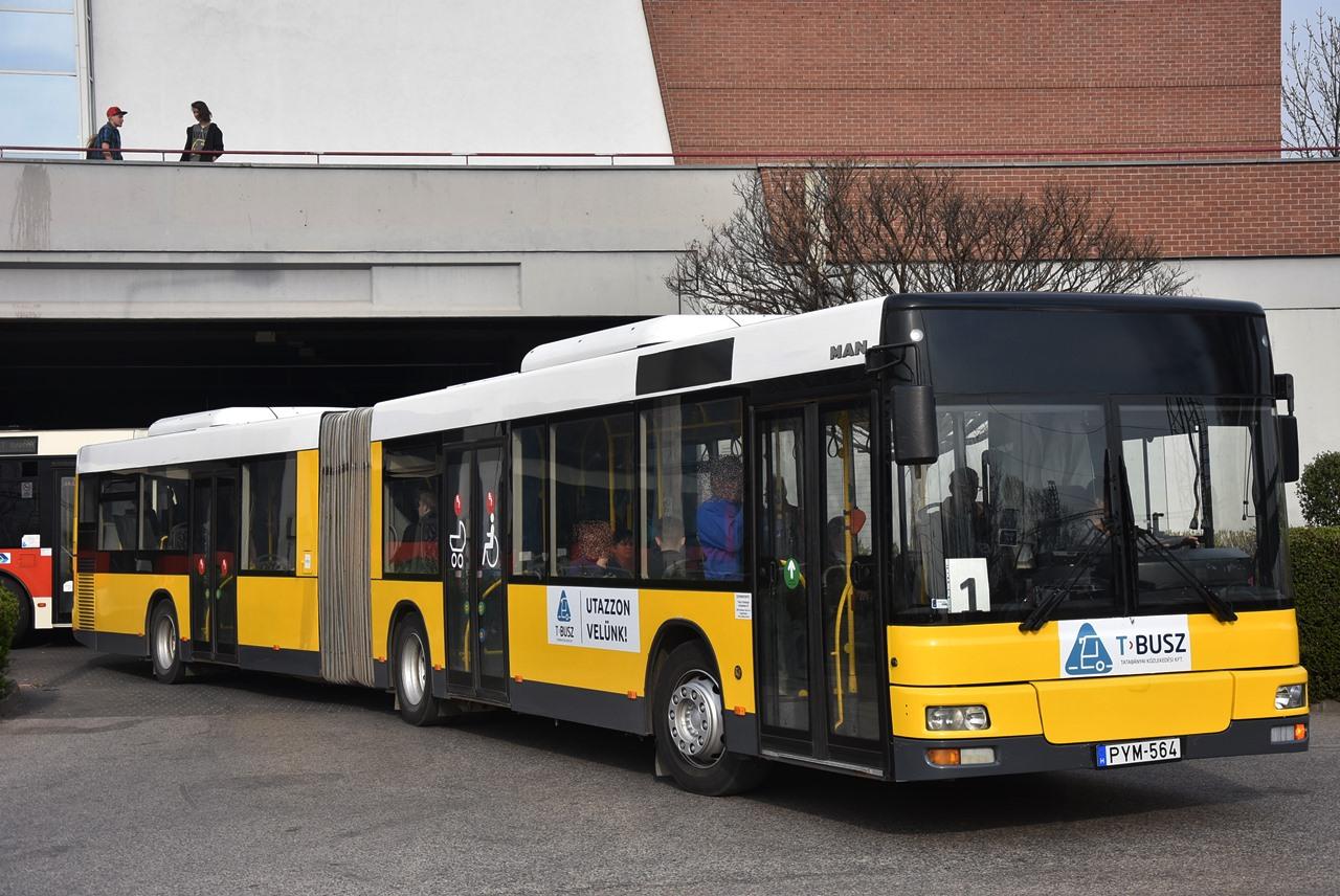 Az MAN A23 NG313 típusú csuklós autóbuszokkal a magyarországi közforgalmú városi járatokon csak Tatabányán találkozhatunk (a képre kattintva galéria nyílik a szerző képeiből)