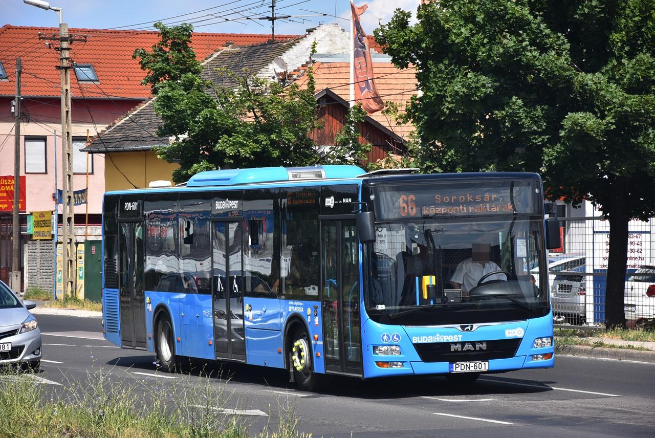 Június után szeptember kezdetével is vadonatúj, alacsonypadlós MAN Lion's City kocsik álltak forgalomba Budapesten. Bohus Dávid a júniusi adag egyik példányát kapta lencsevégre