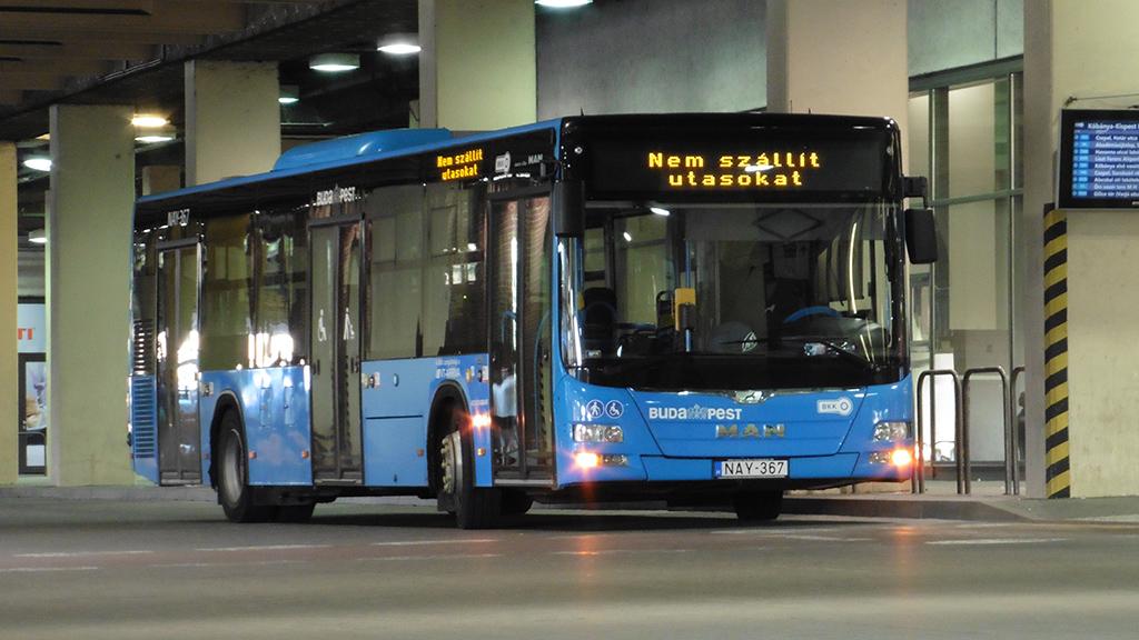 Jól ismert típus Budapesten a szóló MAN Lion's City: 2014-ben a Volánbusz 106-ot, 2015 és 2017 között a VT-Arriva pedig 132-t állított forgalomba. Ilyenből érkezik még húsz példány
