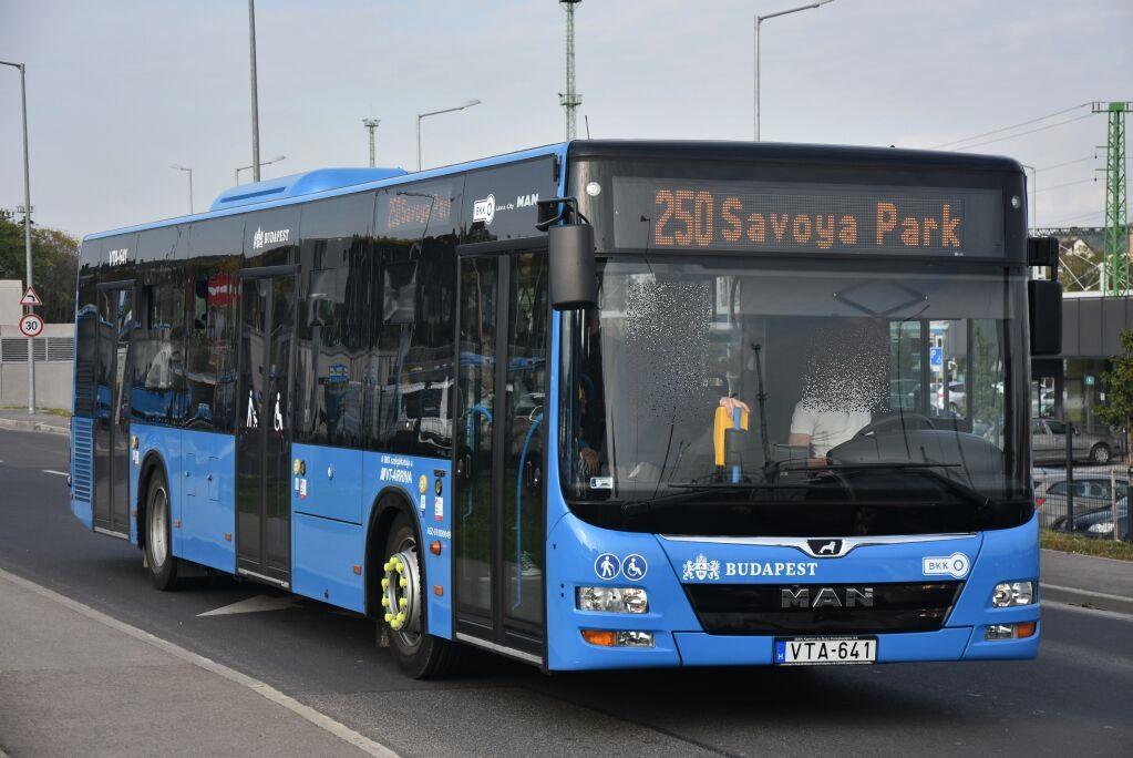 Egy érdekesség az Arrivás MAN buszok között: a PDN rendszámmező 641-es tagja foglalt volt, ezért a számsorozat folyamatossága miatt a társaság rövidítését is jelző VTA betűsorral vizsgáztatták az autóbuszt