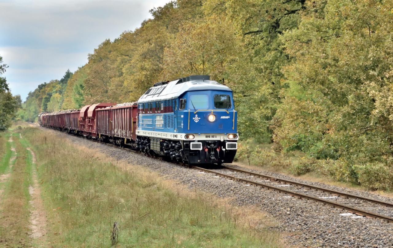 Árvízkárok, baleset vagy éppen pályakarbantartás miatt idén szinte folyamatosan kerülőútként szolgált a Gyékényes–Szentlőrinc (60-as) vasútvonal. Október első felében a 40-es vonalon, Dombóvár és Szentlőrinc között volt vágányzár karbantartás miatt, ezért a pécsi tehervonatokat a 60-as vonalra terelték. Szőcsényi Gábor felvételén az MTMG 102-es Ludmillája továbbít egy Pécsbánya rendezőbe tartó vegyes tehervonatot október 16-án, Középrigócnál