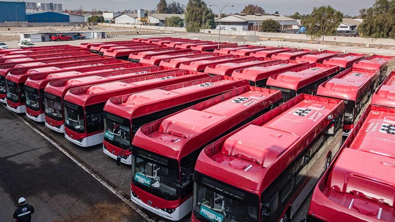 A BYD 150 példányos chilei rendelése (2020)